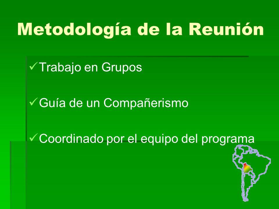 Metodología de la Reunión Trabajo en Grupos Guía de un Compañerismo Coordinado por el equipo del programa
