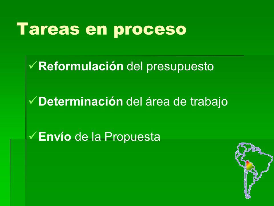 Tareas en proceso Reformulación del presupuesto Determinación del área de trabajo Envío de la Propuesta