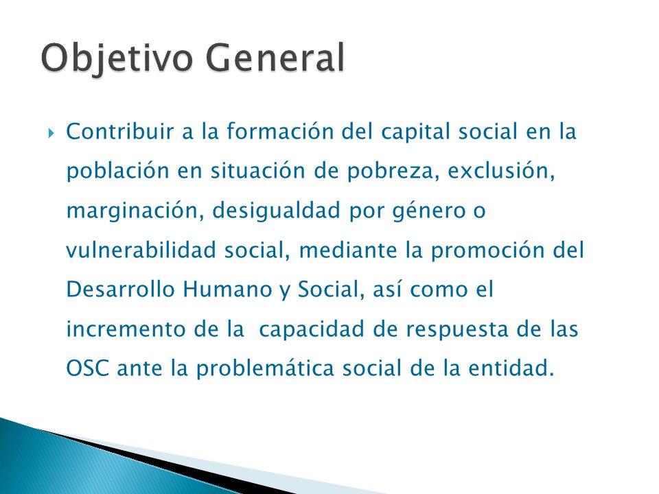 SEDESOL/ INDESOL Secretaría de Desarrollo Humano Jalisco (estrategia VIVE) Fundación Social del Empresariado Jalisciense (FEJAL) Fundación del Sector de la Construcción Jalisco (FUSCO) Fundación Expo Guadalajara Fundación Arancia Corporativa de Fundaciones