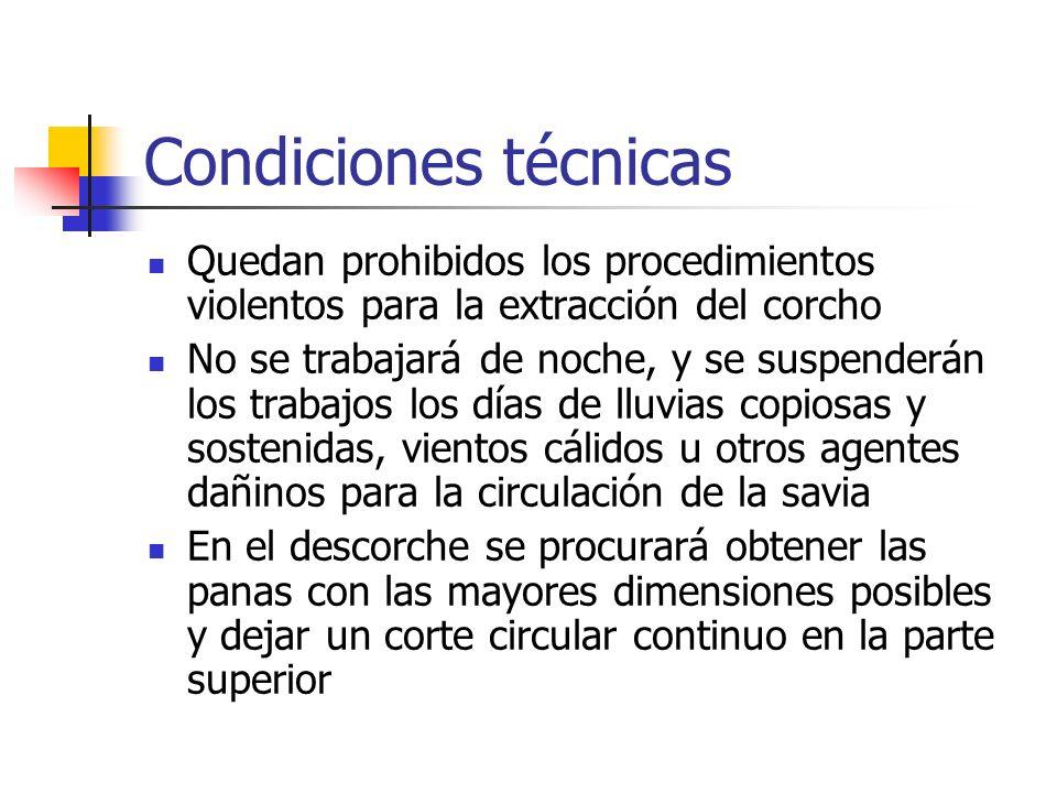 Condiciones técnicas Quedan prohibidos los procedimientos violentos para la extracción del corcho No se trabajará de noche, y se suspenderán los traba