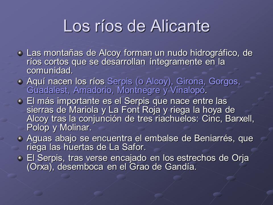 Los ríos de Alicante Las montañas de Alcoy forman un nudo hidrográfico, de ríos cortos que se desarrollan íntegramente en la comunidad. Aquí nacen los