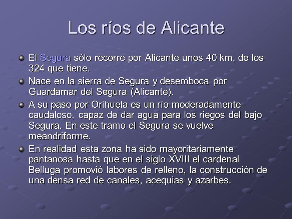 Los ríos de Alicante El Segura sólo recorre por Alicante unos 40 km, de los 324 que tiene. Nace en la sierra de Segura y desemboca por Guardamar del S