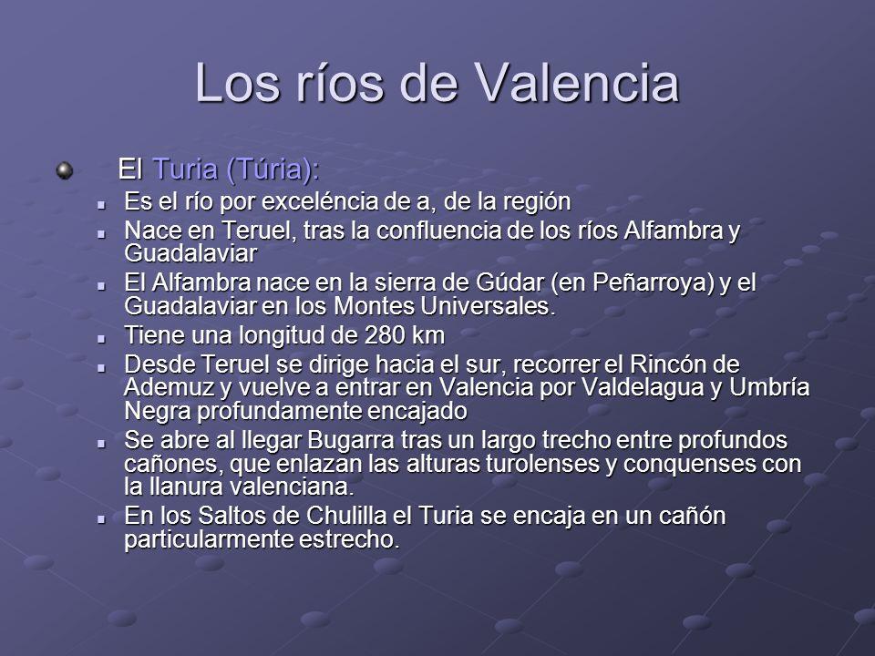 Los ríos de Valencia El Turia (Túria): El Turia (Túria): Es el río por exceléncia de a, de la región Es el río por exceléncia de a, de la región Nace
