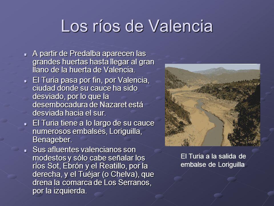 Los ríos de Valencia A partir de Predalba aparecen las grandes huertas hasta llegar al gran llano de la huerta de Valencia. A partir de Predalba apare
