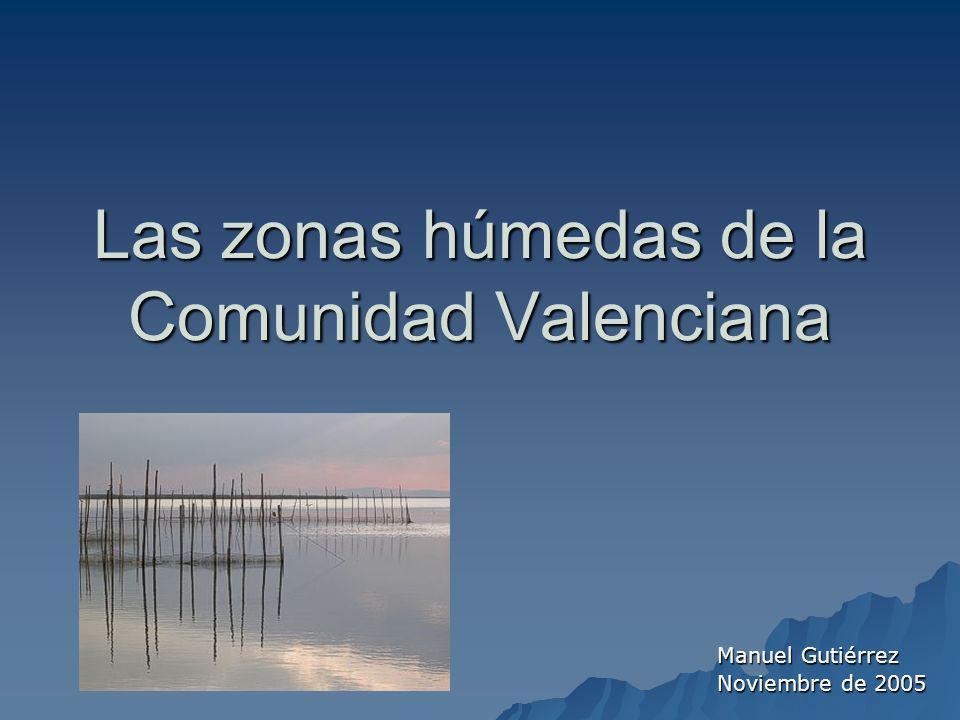 Albufera de Valencia y marjal contigua Es una laguna costera de poca profundidad media (1.5 m.) que se halla separada del mar por la barra del Saler.