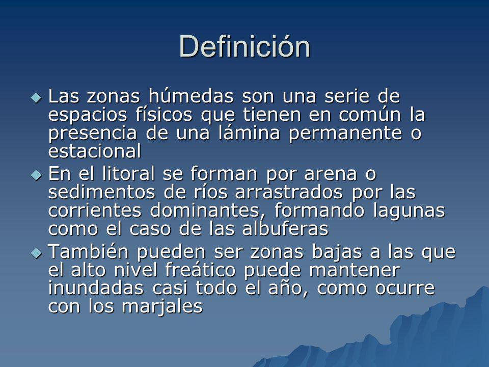 Definición Las zonas húmedas son una serie de espacios físicos que tienen en común la presencia de una lámina permanente o estacional Las zonas húmeda