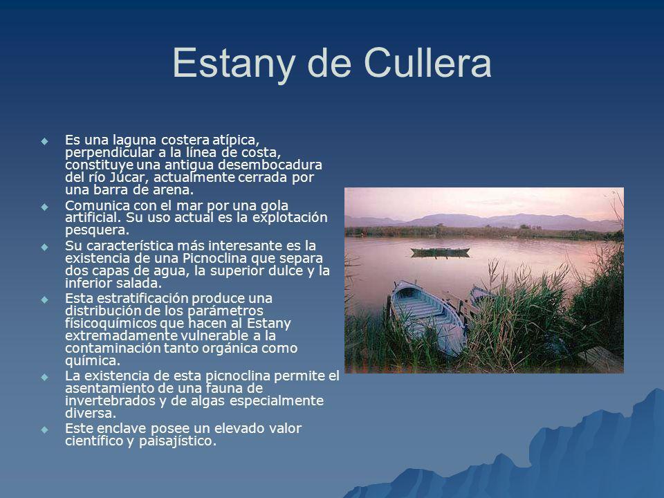 Estany de Cullera Es una laguna costera atípica, perpendicular a la línea de costa, constituye una antigua desembocadura del río Júcar, actualmente ce