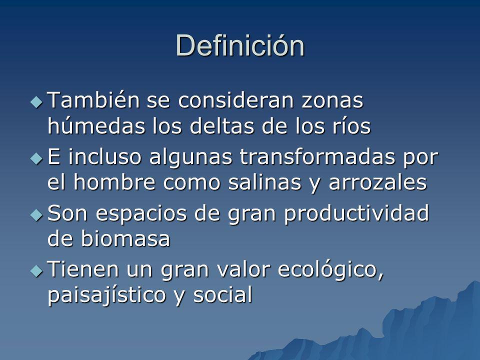Definición También se consideran zonas húmedas los deltas de los ríos También se consideran zonas húmedas los deltas de los ríos E incluso algunas tra