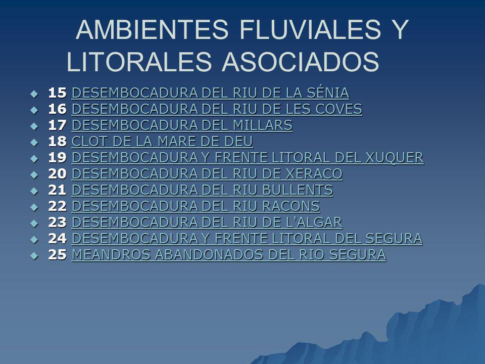 AMBIENTES FLUVIALES Y LITORALES ASOCIADOS 15 DESEMBOCADURA DEL RIU DE LA SÉNIA 15 DESEMBOCADURA DEL RIU DE LA SÉNIADESEMBOCADURA DEL RIU DE LA SÉNIADE
