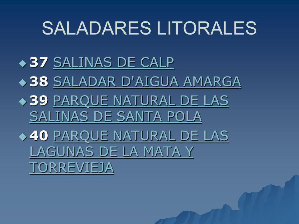 SALADARES LITORALES 37 SALINAS DE CALP 37 SALINAS DE CALP SALINAS DE CALPSALINAS DE CALP 38 SALADAR D'AIGUA AMARGA 38 SALADAR D'AIGUA AMARGASALADAR D'