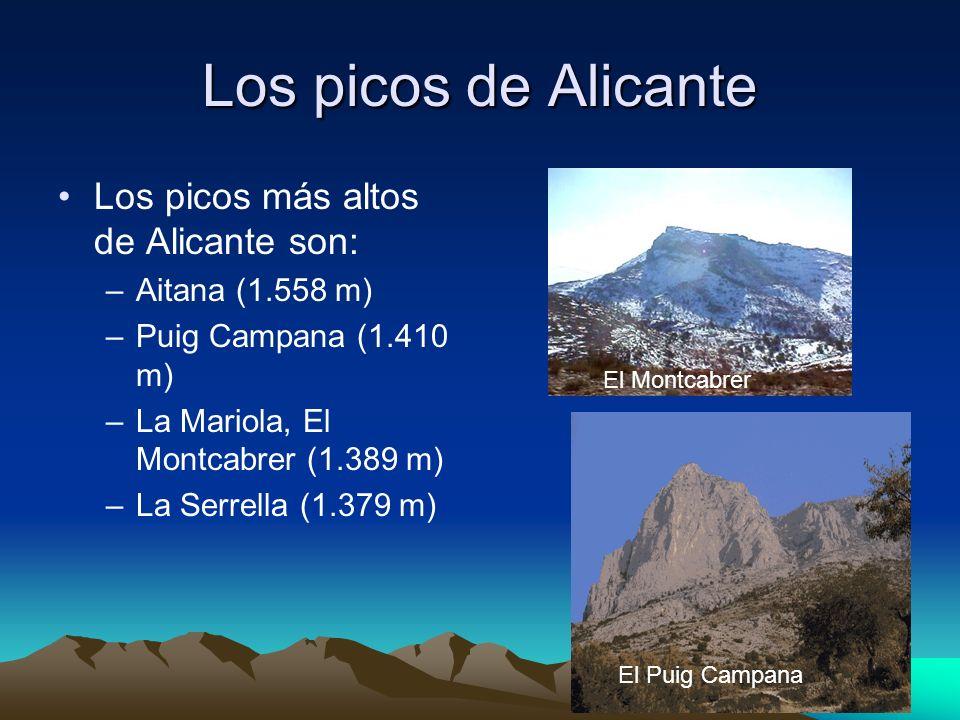 Los picos de Alicante Los picos más altos de Alicante son: –Aitana (1.558 m) –Puig Campana (1.410 m) –La Mariola, El Montcabrer (1.389 m) –La Serrella