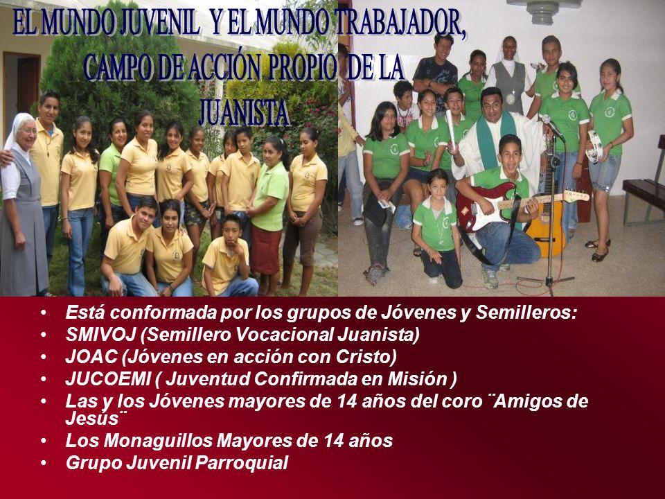 Está conformada por los grupos de Jóvenes y Semilleros: SMIVOJ (Semillero Vocacional Juanista) JOAC (Jóvenes en acción con Cristo) JUCOEMI ( Juventud