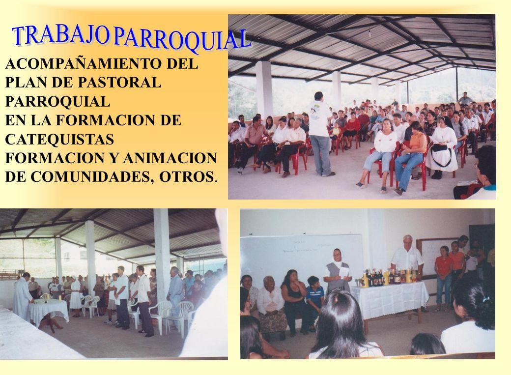 ACOMPAÑAMIENTO DEL PLAN DE PASTORAL PARROQUIAL EN LA FORMACION DE CATEQUISTAS FORMACION Y ANIMACION DE COMUNIDADES, OTROS.
