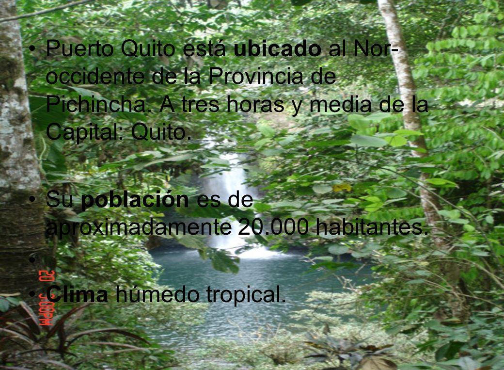 Fue fundado en el año 1973 y su nombre fue asignado por Pedro Vicente Maldonado, en una de sus incursiones a esta zona; buscando un camino corto entro Quito y el Océano Pacífico.