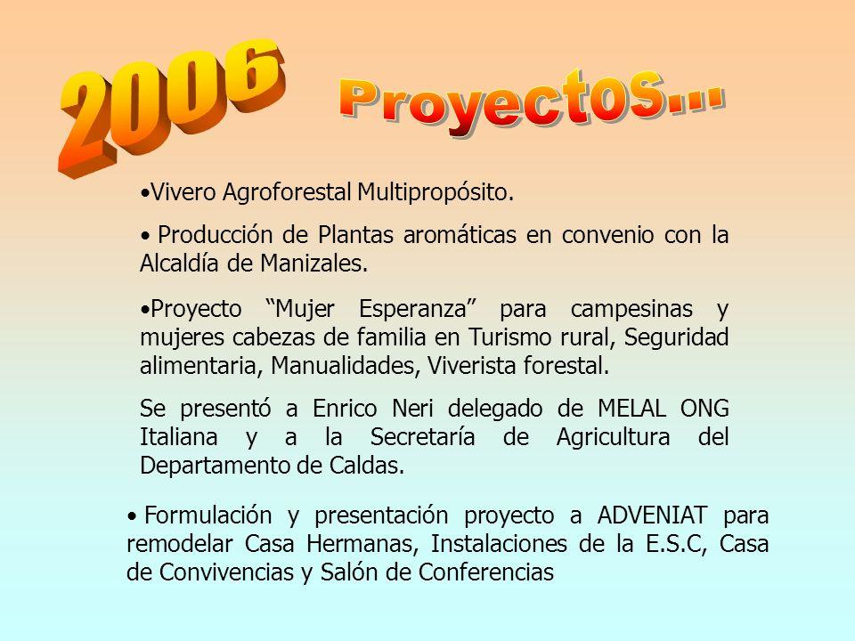 Vivero Agroforestal Multipropósito. Producción de Plantas aromáticas en convenio con la Alcaldía de Manizales. Proyecto Mujer Esperanza para campesina