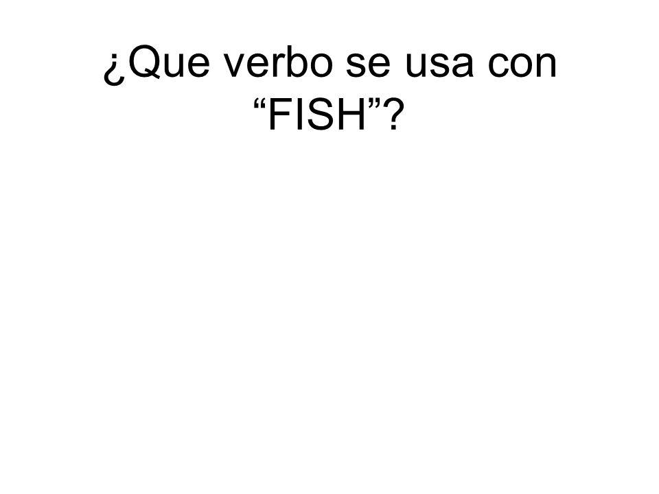 ¿Que verbo se usa con FISH?