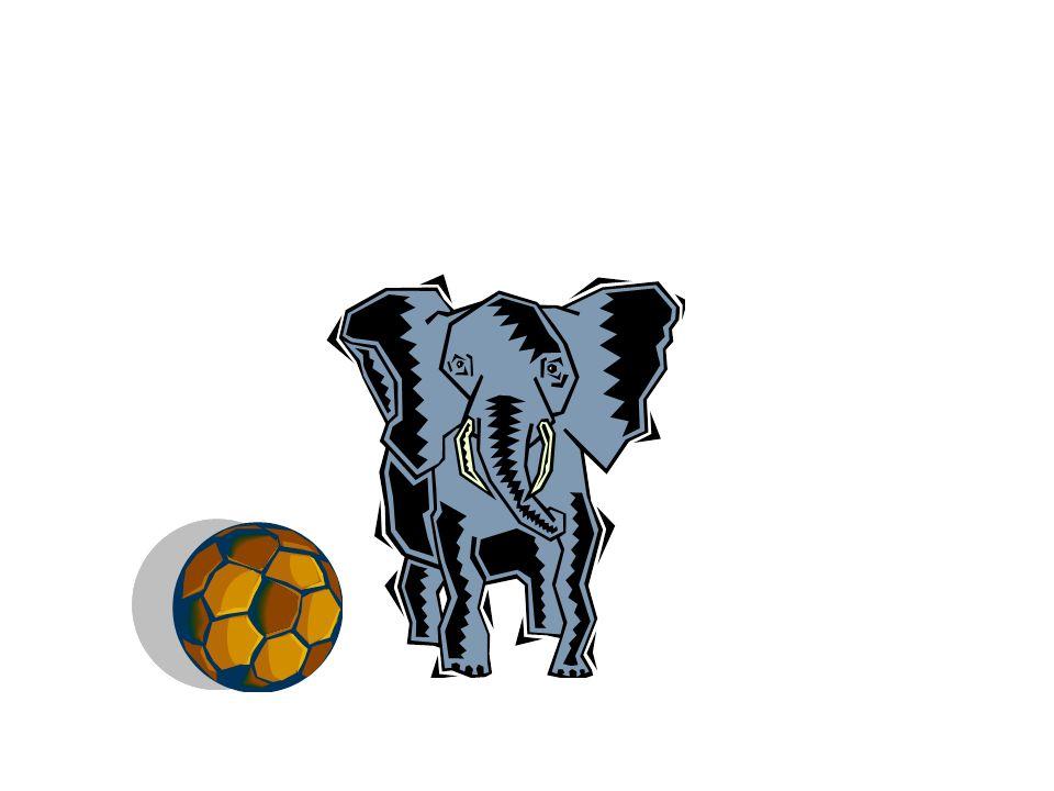 Está delante del elefante.