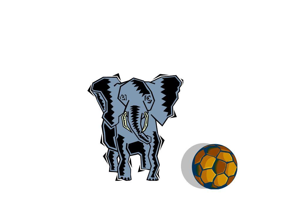 Está a la izquierda del elefante.