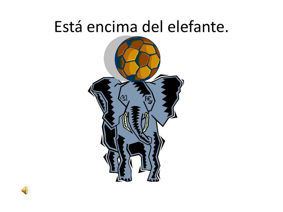 Está encima del elefante.