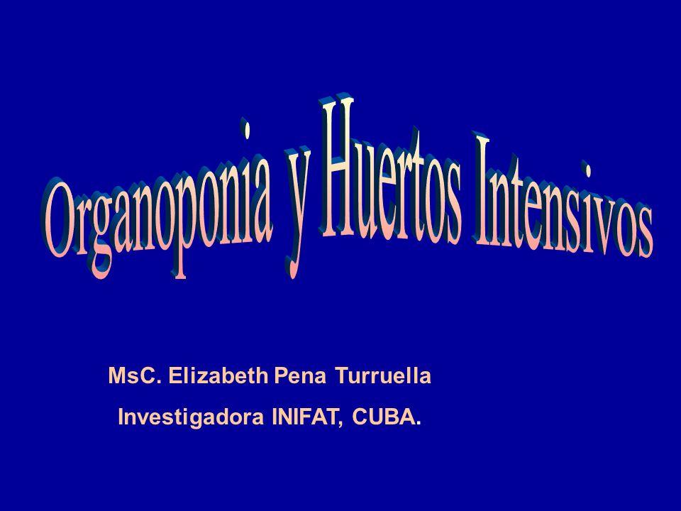MsC. Elizabeth Pena Turruella Investigadora INIFAT, CUBA.