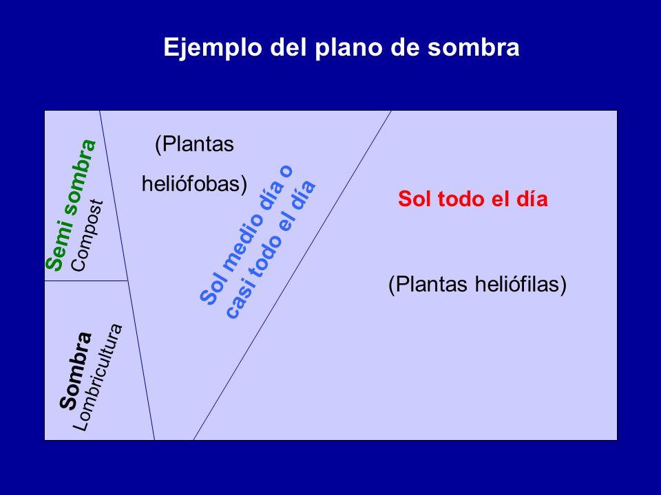 Sol todo el día Sol medio día o casi todo el día Semi sombra Sombra Ejemplo del plano de sombra (Plantas heliófilas) (Plantas heliófobas) Compost Lomb