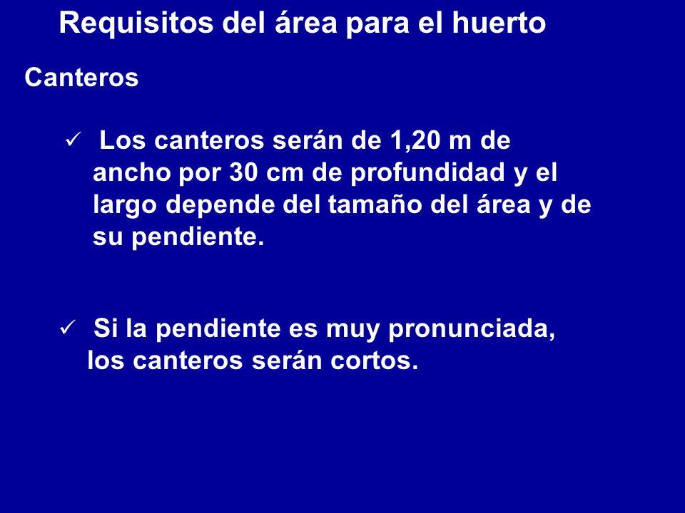 Requisitos del área para el huerto Canteros ü Los canteros serán de 1,20 m de ancho por 30 cm de profundidad y el largo depende del tamaño del área y