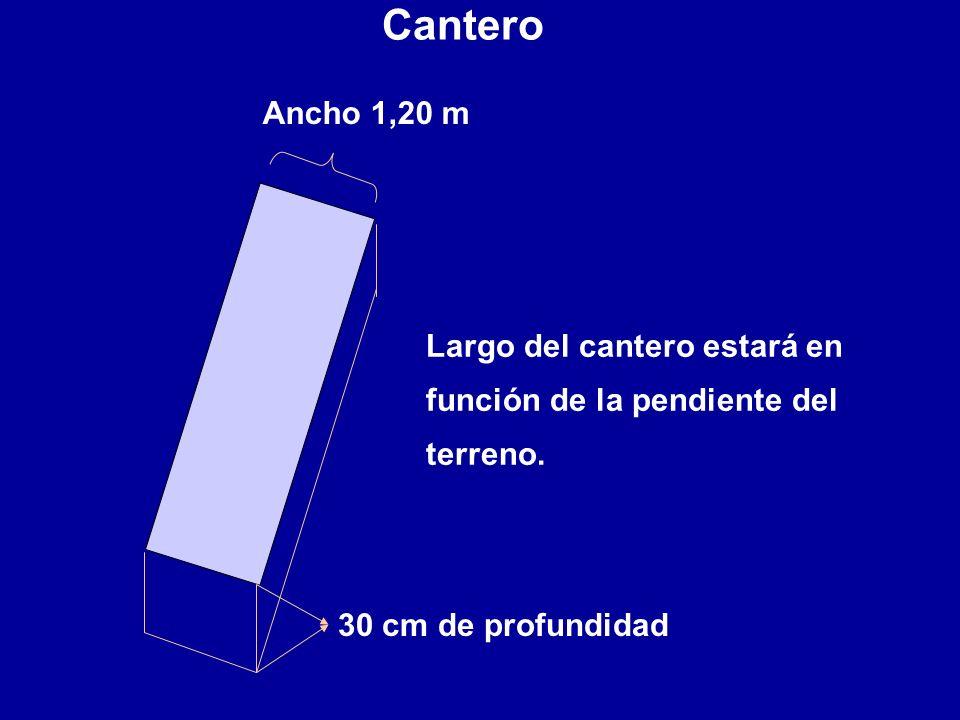 Ancho 1,20 m 30 cm de profundidad Largo del cantero estará en función de la pendiente del terreno. Cantero