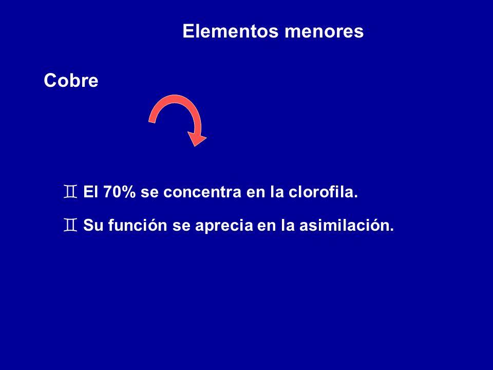 Elementos menores Cobre ` El 70% se concentra en la clorofila. ` Su función se aprecia en la asimilación.