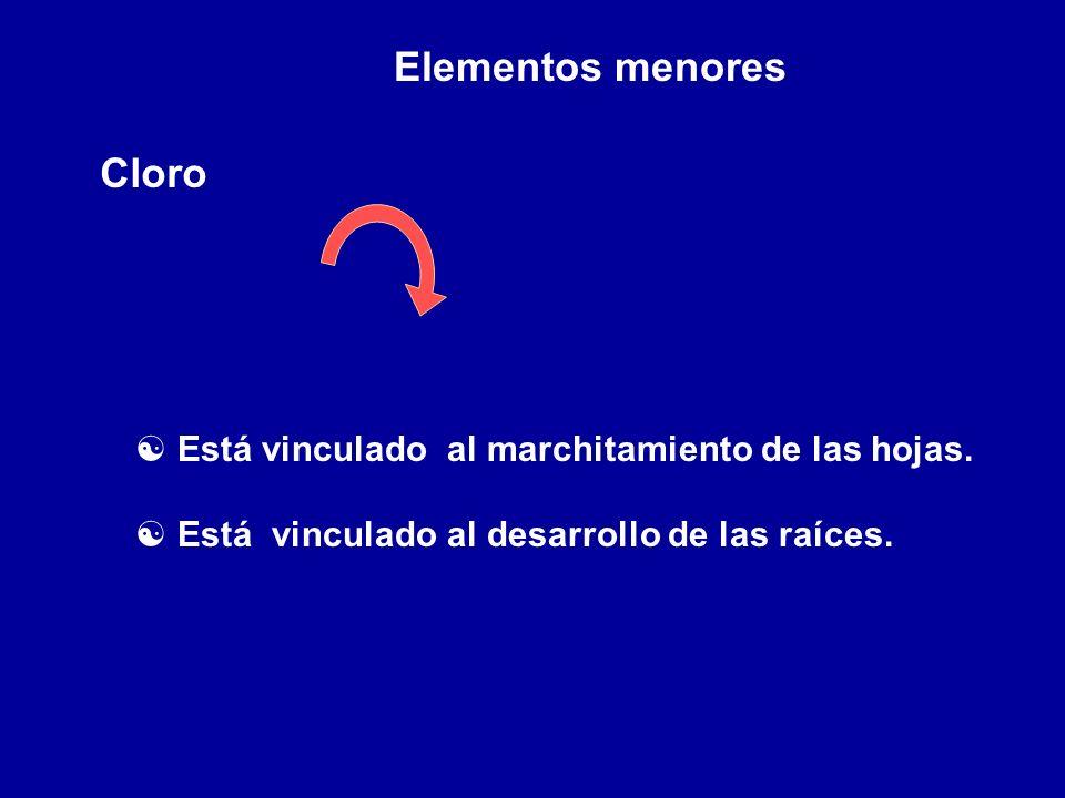 Elementos menores Cloro [ Está vinculado al marchitamiento de las hojas. [ Está vinculado al desarrollo de las raíces.