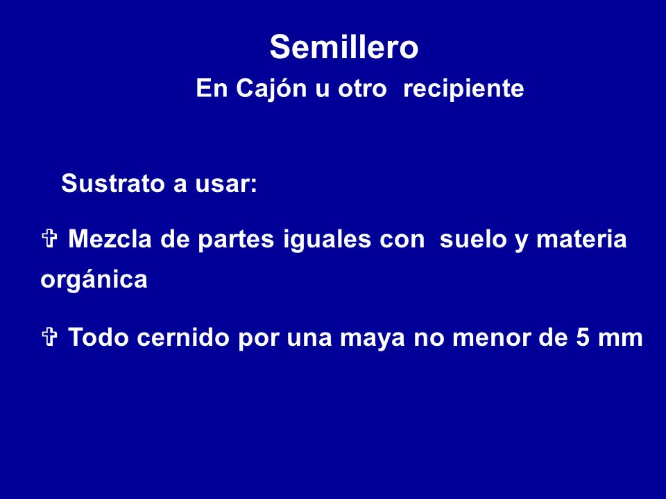 En Cajón u otro recipiente Semillero Sustrato a usar: V Mezcla de partes iguales con suelo y materia orgánica V Todo cernido por una maya no menor de