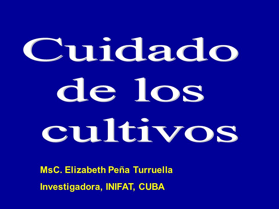 MsC. Elizabeth Peña Turruella Investigadora, INIFAT, CUBA