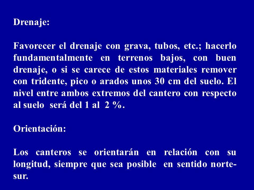 Dimensiones de canteros y pasillos: Longitud: No más de 40 m Anchura: 1,2 m de cantero efectivo.