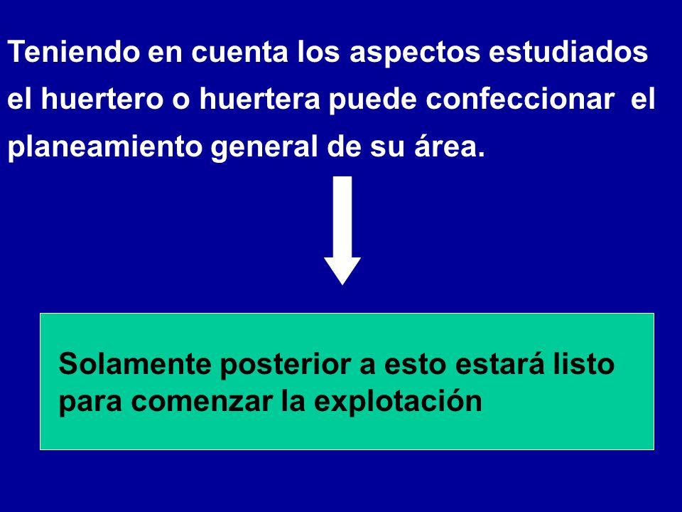 Teniendo en cuenta los aspectos estudiados el huertero o huertera puede confeccionar el planeamiento general de su área. Solamente posterior a esto es