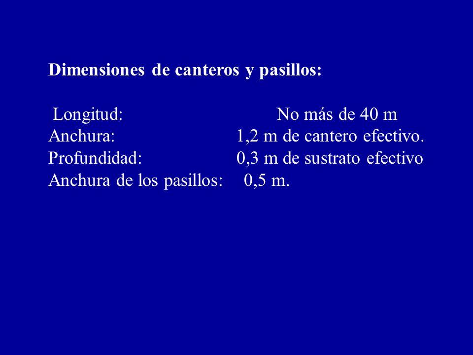 Dimensiones de canteros y pasillos: Longitud: No más de 40 m Anchura: 1,2 m de cantero efectivo. Profundidad: 0,3 m de sustrato efectivo Anchura de lo