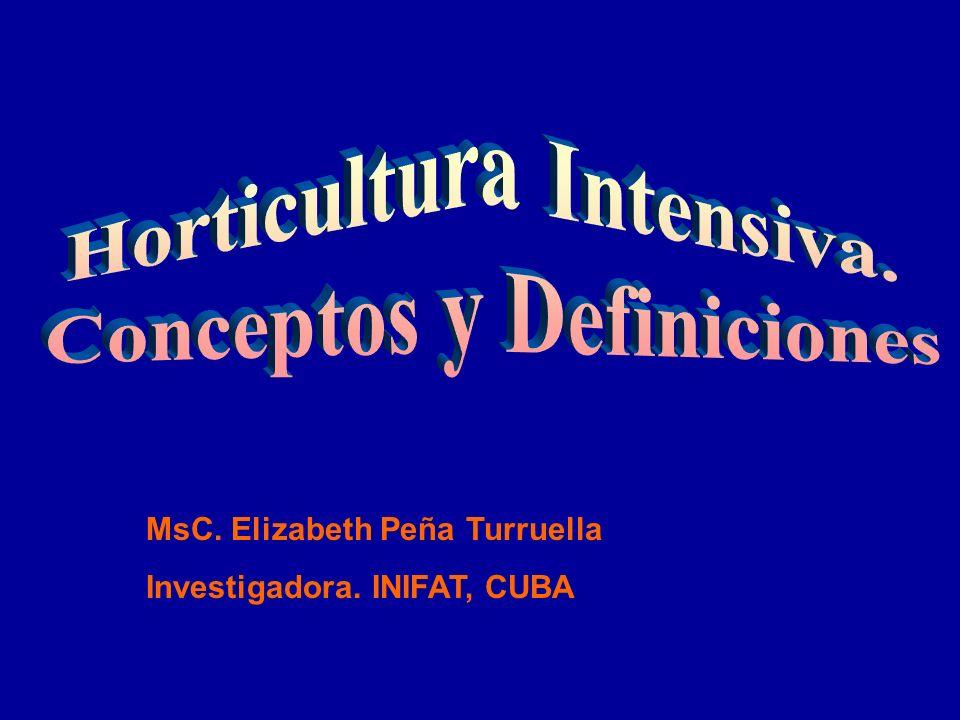 MsC. Elizabeth Peña Turruella Investigadora. INIFAT, CUBA