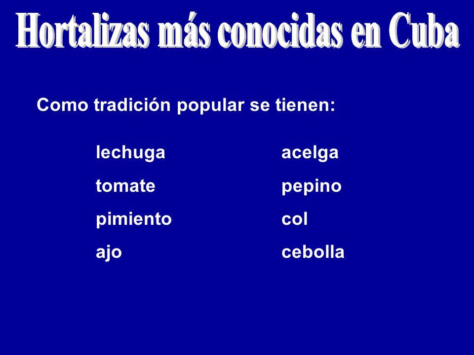 Como tradición popular se tienen: lechuga tomate pimiento ajo acelga pepino col cebolla