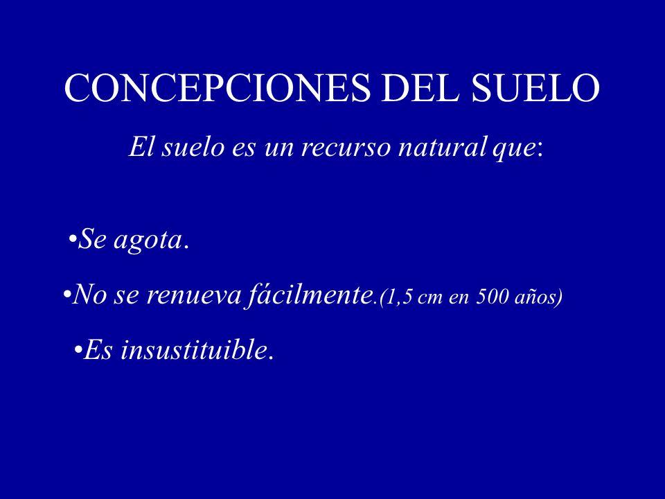 CONCEPCIONES DEL SUELO El suelo es un recurso natural que: Se agota. No se renueva fácilmente.(1,5 cm en 500 años) Es insustituible.