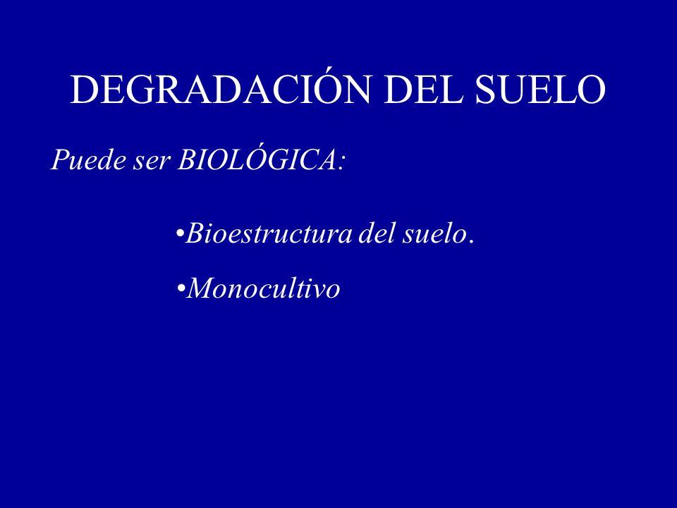 DEGRADACIÓN DEL SUELO Puede ser BIOLÓGICA: Bioestructura del suelo. Monocultivo