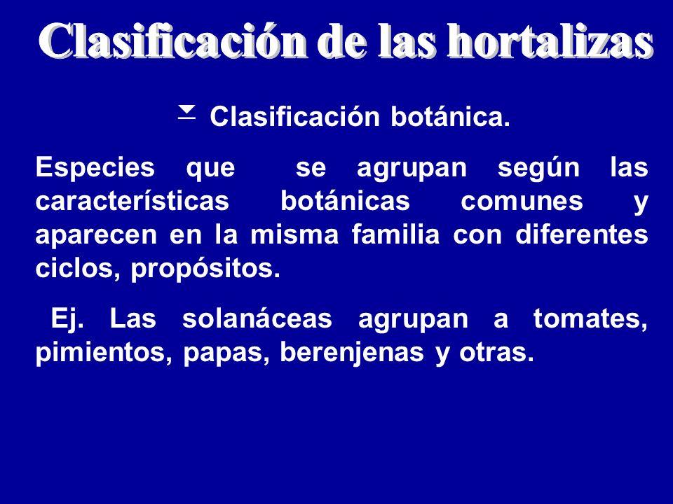 Clasificación botánica. Especies que se agrupan según las características botánicas comunes y aparecen en la misma familia con diferentes ciclos, prop