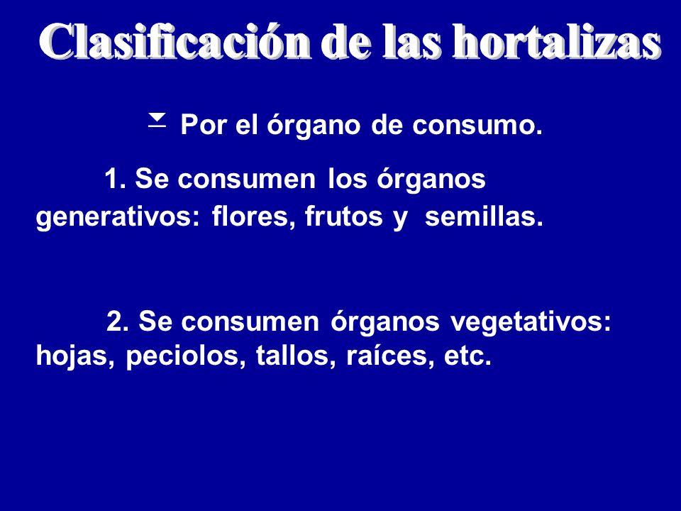 Por el órgano de consumo. 1. Se consumen los órganos generativos: flores, frutos y semillas. 2. Se consumen órganos vegetativos: hojas, peciolos, tall