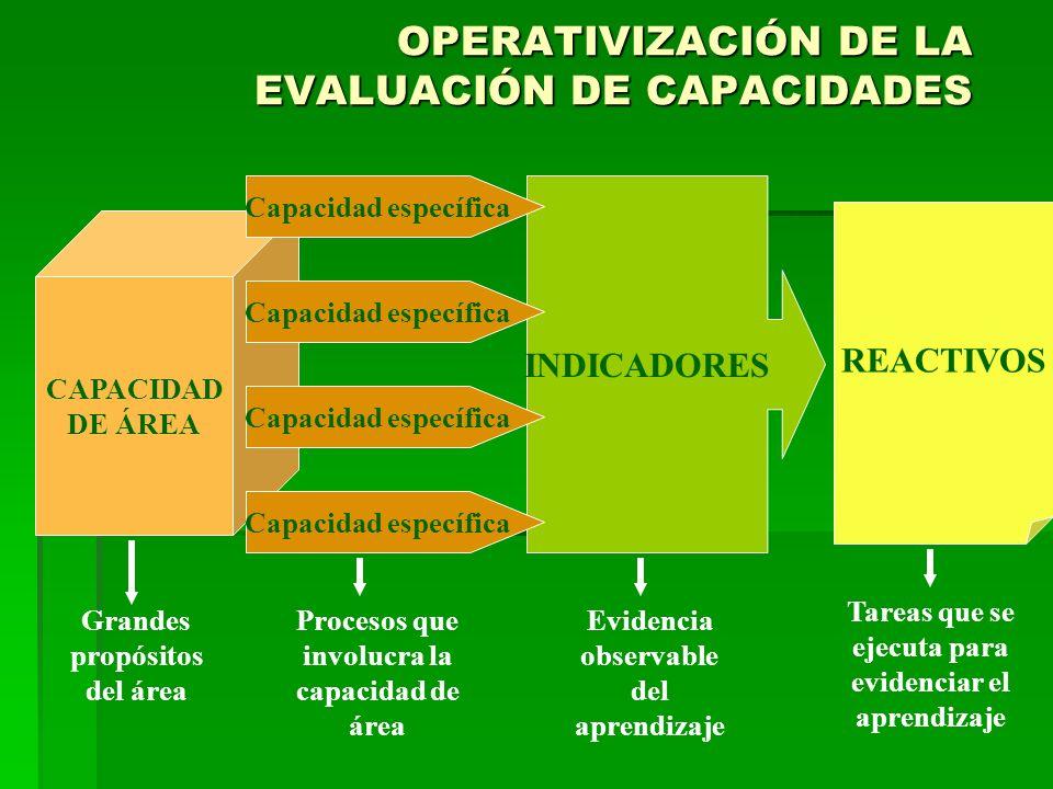 INDICADORES OPERATIVIZACIÓN DE LA EVALUACIÓN DE CAPACIDADES CAPACIDAD DE ÁREA Capacidad específica REACTIVOS Grandes propósitos del área Procesos que