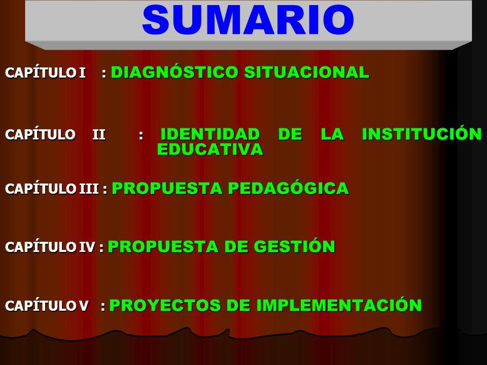 QUINTOCAPÍTULO PROYECTOS DE IMPLEMENTACIÓN