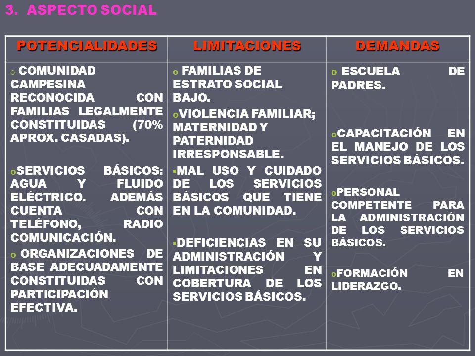 POTENCIALIDADESLIMITACIONESDEMANDAS o ORGANIZACIÓN DEL CENTRO POBLADO MENOR EN BARRIOS.