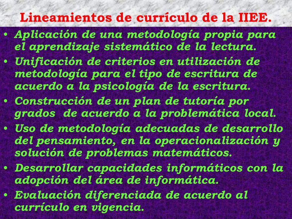Lineamientos de currículo de la IIEE. Aplicación de una metodología propia para el aprendizaje sistemático de la lectura. Unificación de criterios en