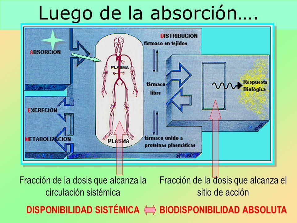 Luego de la absorción…. Fracción de la dosis que alcanza la circulación sistémica DISPONIBILIDAD SISTÉMICA Fracción de la dosis que alcanza el sitio d