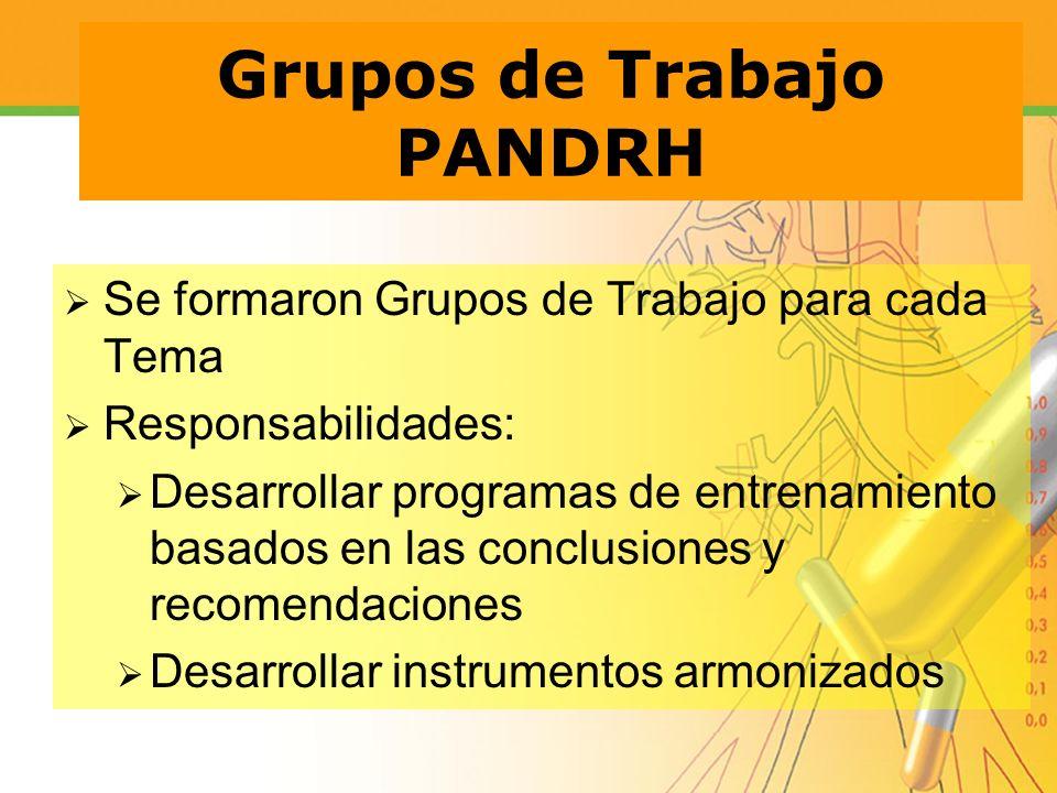 Grupos de Trabajo PANDRH Se formaron Grupos de Trabajo para cada Tema Responsabilidades: Desarrollar programas de entrenamiento basados en las conclus