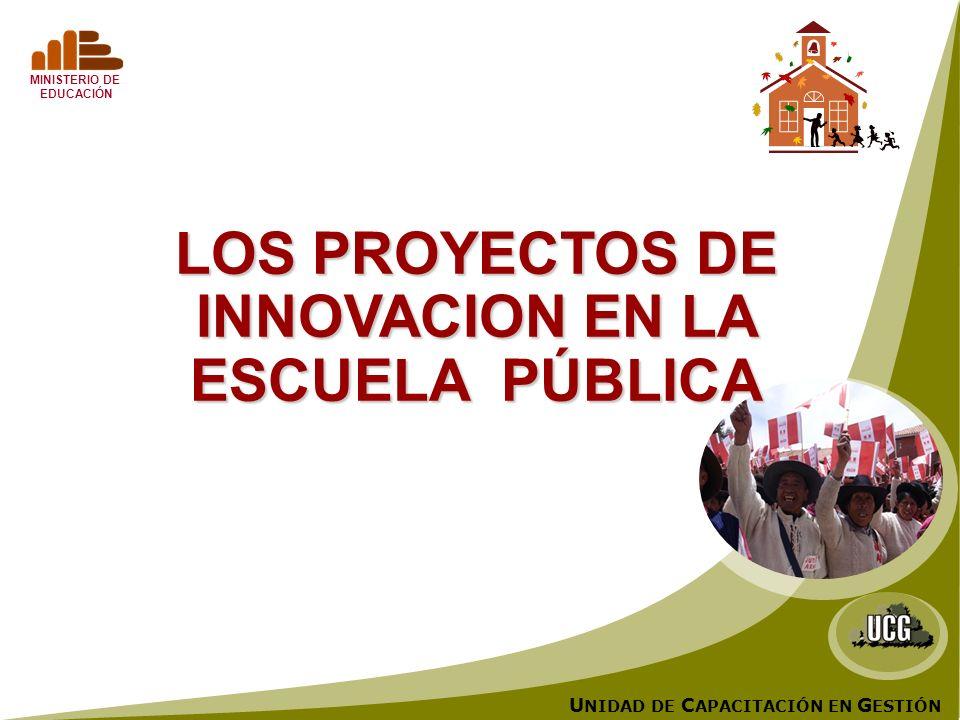 U NIDAD DE C APACITACIÓN EN G ESTIÓN MINISTERIO DE EDUCACIÓN LOS PROYECTOS DE INNOVACION EN LA ESCUELA PÚBLICA