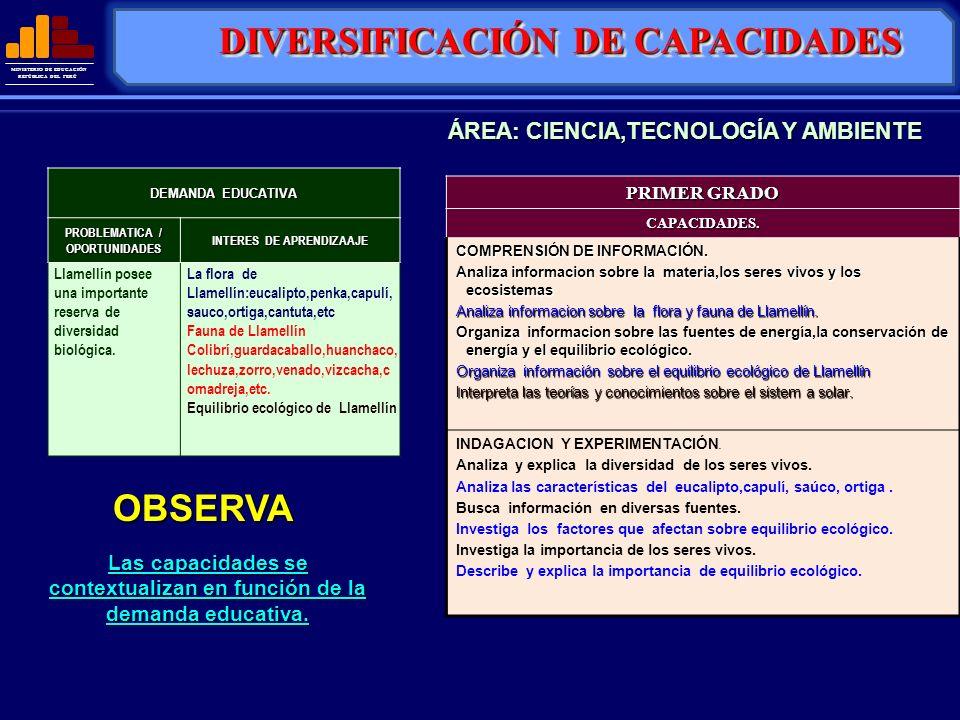 MINISTERIO DE EDUCACIÓN REPÚBLICA DEL PERÚ OBSERVA Las capacidades se contextualizan en función de la demanda educativa. DIVERSIFICACIÓN DE CAPACIDADE
