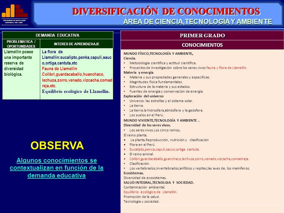 MINISTERIO DE EDUCACIÓN REPÚBLICA DEL PERÚ DIVERSIFICACIÓN DE CONOCIMIENTOS OBSERVA Algunos conocimientos se contextualizan en función de la demanda e