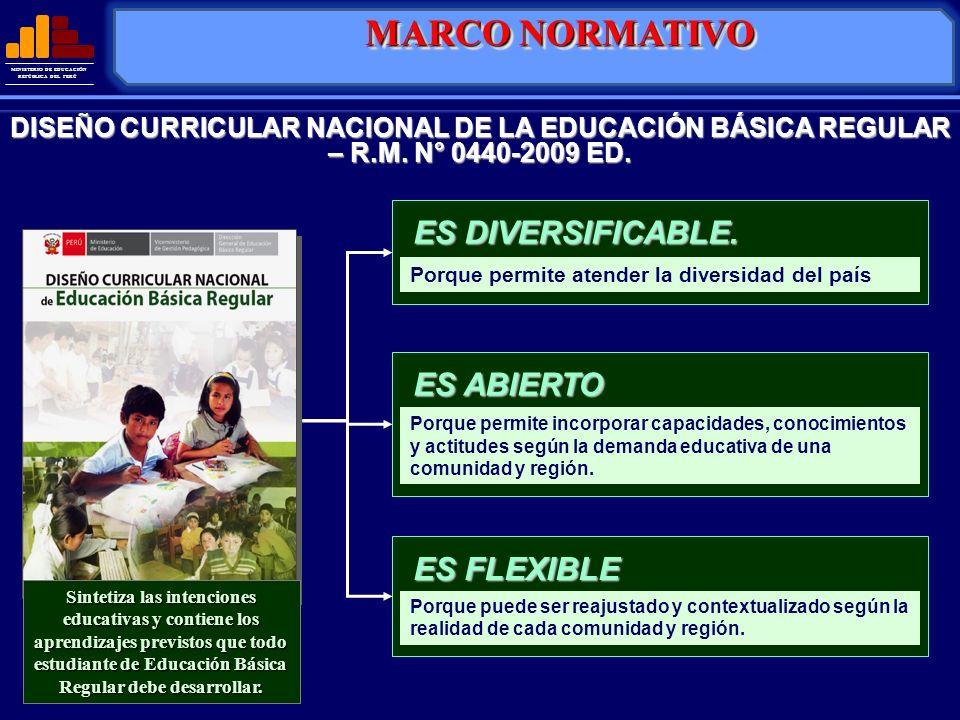 MINISTERIO DE EDUCACIÓN REPÚBLICA DEL PERÚ DISEÑO CURRICULAR NACIONAL DE LA EDUCACIÓN BÁSICA REGULAR – R.M. N° 0440-2009 ED. Porque permite atender la